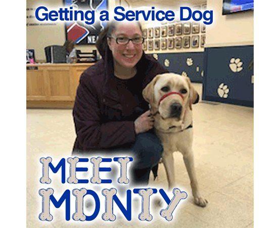 Meet My Monty